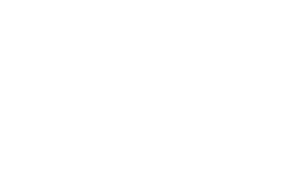 Isle of Wight Chamber Logo in White